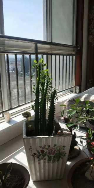 (山南)代家新村3室2厅1卫127m²简单装修
